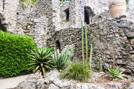 Garden of Villa Rufolo in Ravello village, Amalfi coast, Italy photo