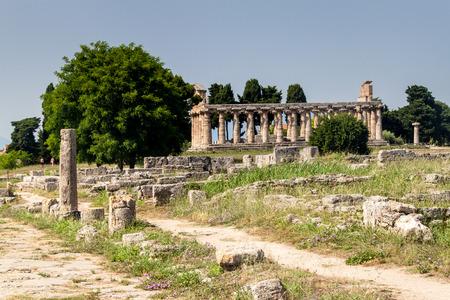 templo griego: Templo griego cl�sico en las ruinas de la antigua ciudad de Paestum, Italia