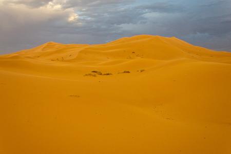 erg chebbi: Sand dunes in Erg Chebbi, Morocco