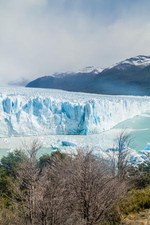 moreno: Perito Moreno glacier in Argentina