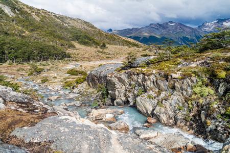 tierra del fuego: Nature in Tierra del Fuego, Argentina