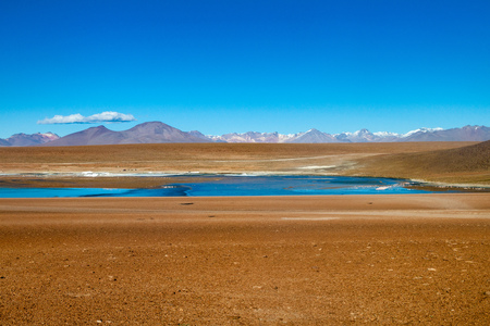 lipez: Laguna Collpa lake on bolivian Altiplano Stock Photo