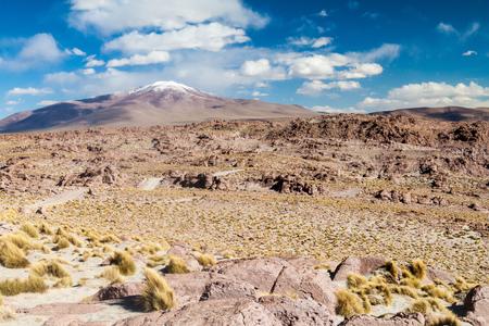 terrain: Landscape of bolivian Altiplano Stock Photo