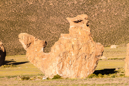 italia: Rock formation called Camel in Italia perdida in Bolivia