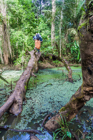 adventurers: Tourists in a jungle of Madidi National Park, Bolivia