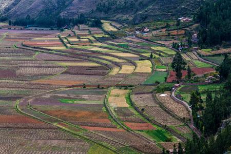 pisaq: Agricultural terraces in Sacred Valley of Incas near Pisac village, Peru