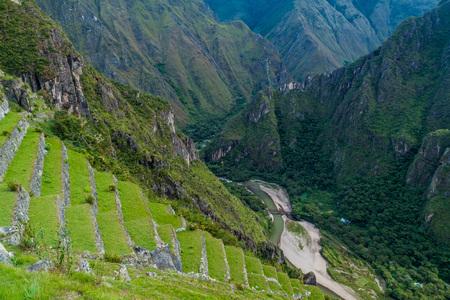 machu picchu: Former agricultural terraces at Machu Picchu ruins, Peru Stock Photo