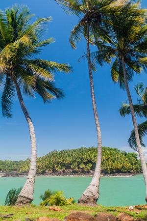 salut: View of Ile Saint Joseph island from Ile Royale in archipelago of Iles du Salut (Islands of Salvation) in French Guiana
