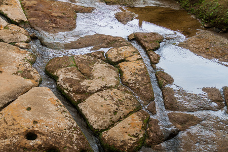 san agustin: Ancient riverbed carvings called Fuente de Lavapatas in archeological park in San Agustin, Colombia