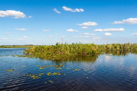 Wetlands in Nature Reserve Esteros del Ibera, Argentina