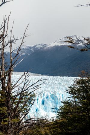 calving: Perito Moreno glacier in National Park Los Glaciares, Argentina