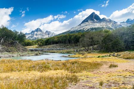 tierra del fuego: Beaver dam in Tierra del Fuego, Argentina