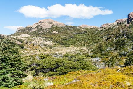 cerro chalten: Nature in National Park Los Glaciares, Patagonia, Argentina