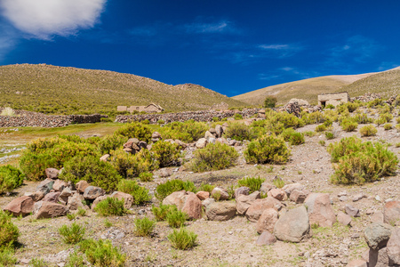 Village with adobe houses on bolivian Altiplano