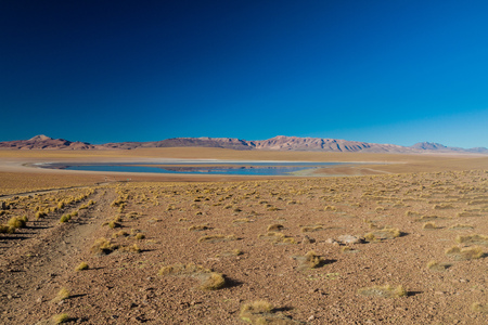 laguna: Laguna Collpa lake on bolivian Altiplano Stock Photo