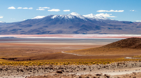 lipez: Laguna Colorada lake in Bolivia