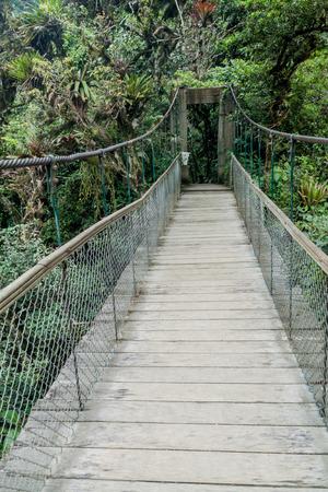 diablo: Suspension bridge leading to the viewpoint on Pailon del Diablo (Devils Cauldron) waterfall near Banos town, Ecuador Stock Photo