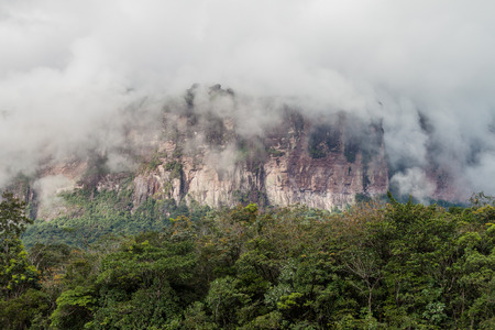 unexplored: Tepui (table mountain) Auyan in National Park Canaima, Venezuela Stock Photo