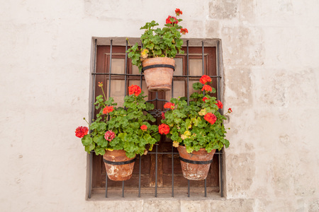 catholic nuns: Window with flowers in Santa Catalina monastery in Arequipa, Peru