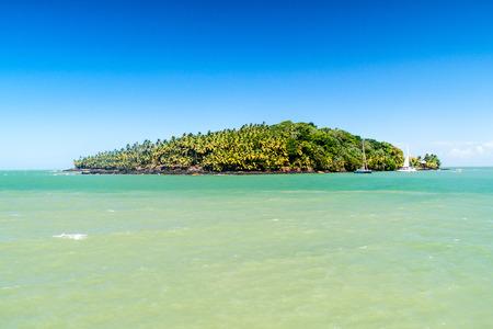political prisoner: Ile Saint Joseph island in archipelago of Iles du Salut (Islands of Salvation) in French Guiana