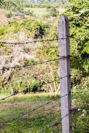 cattle guard: Barbed wire fence protecting a pasture