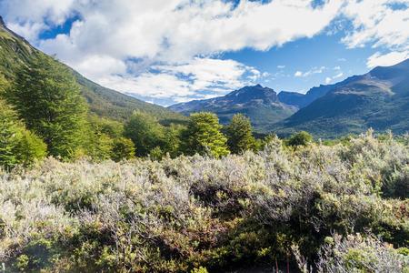 tierra: Countryside in National Park Tierra del Fuego, Argentina Stock Photo
