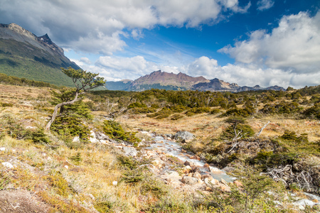 traquility: Nature in Tierra del Fuego, Argentina