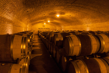 aging american: CHACRAS DE CORIA, ARGENTINA - AUG 1, 2015: Wine cellar of winery Altavista in Chacras de Coria village, near Mendoza, Argentina