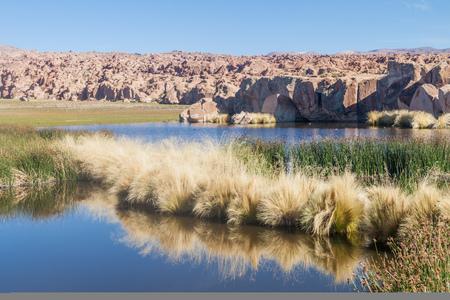 Laguna Negra lake in Bolivia