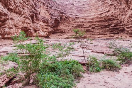 diablo: Detail of a rock formation called Garganta del Diablo (Devils Throat) in Quebrada de Cafayate valley, Argentina
