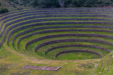 sacred valley of the incas: Round agricultural terraces of Incas at Moray, Sacred Valley, Peru