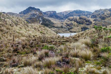 Lanscape of National Park Cajas, Ecuador