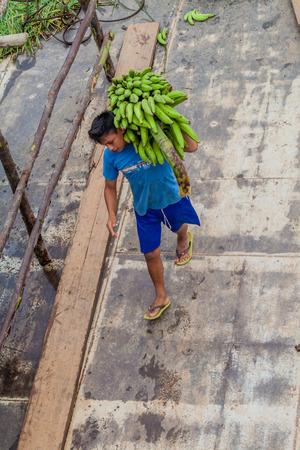 plies: NAPO, PERU - JULY 14, 2015: Cargo boat crew transports bunches of plantains to the boat deck. Cargo boat Arabela I plies river Napo. Editorial