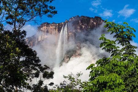 ottimo: Angel Falls (Salto Angel), la cascata più alta del mondo (978 m), il Venezuela