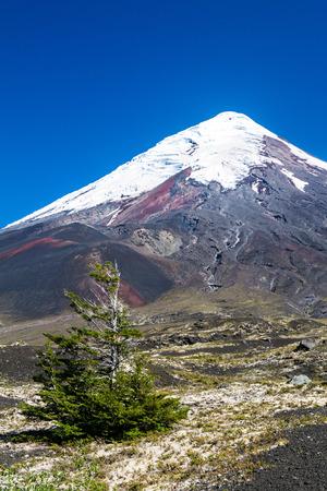 View of Osorno volcano, Chile