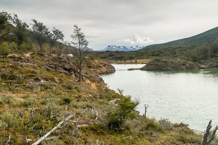 tierra: National Park Tierra del Fuego, Argentina Stock Photo
