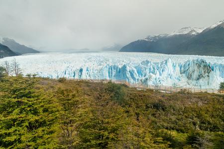 calafate: Perito Moreno glacier in National Park Los Glaciares, Argentina