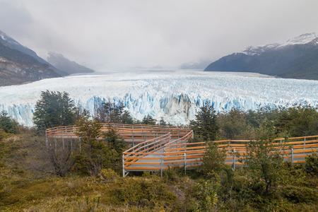 calafate: Boardwalks in a forest around Perito Moreno glacier, Patagonia, Argentina