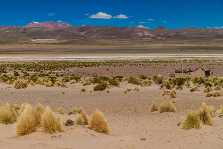 lipez: Landscape of bolivian Altiplano Stock Photo