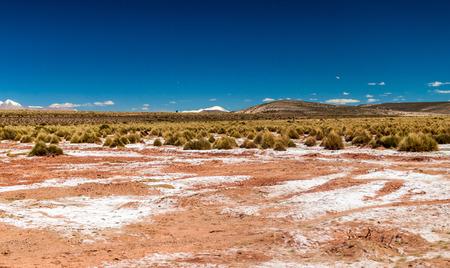 avaroa: Landscape of bolivian Altiplano Stock Photo