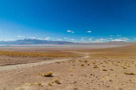 lipez: Bare landscape of bolivian Altiplano, Laguna Colorada lake in the background