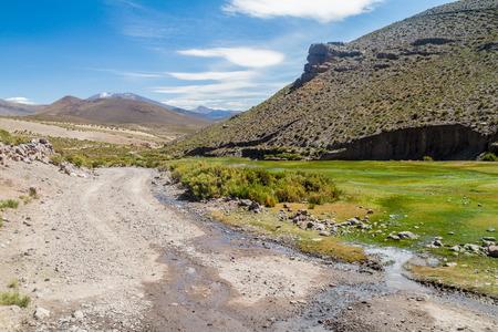 bolivian: Dust road on bolivian Altiplano