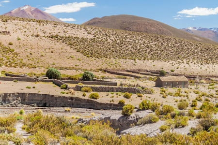 adobe: Adobe house in the wilderness of bolivian Altiplano Editorial