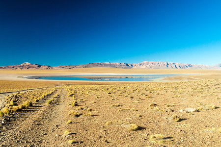 vastness: Laguna Collpa lake on bolivian Altiplano Stock Photo