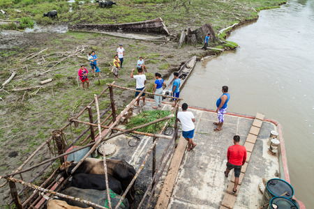 plies: NAPO, PERU - JULY 14, 2015: Cargo deck of a boat Arabela I which plies river Napo, Peru. The crew buys local products.