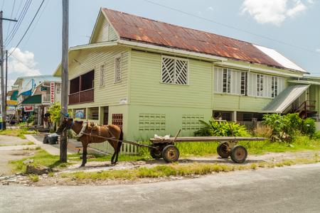 horse cart: GEORGETOWN, GUYANA - AUGUST 10, 2015: Horse cart in Georgetown, capital of Guyana. Editorial