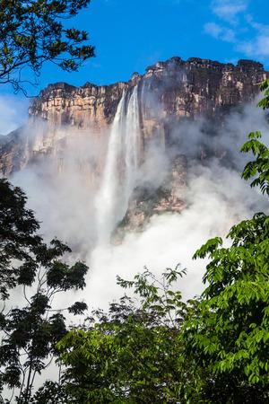 천사 폭포 (Salto Angel), 세계에서 가장 높은 폭포 (978 m), 베네수엘라 스톡 콘텐츠 - 62023193