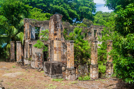 the salvation: Ruins of a former penal colony at Ile Royale, one of the islands of Iles du Salut (Islands of Salvation) in French Guiana