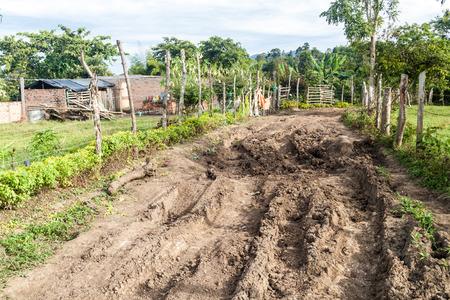san agustin: Muddy road near San Agustin, Colombia