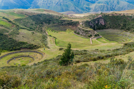 Round agricultural terraces Moray made by Inca empire, Peru